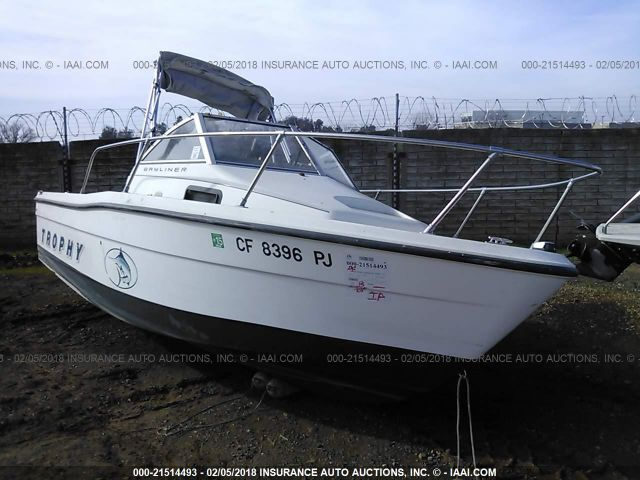 click here to view 1999 BAYLINER 1903 TROPH at IBIDSAFELY