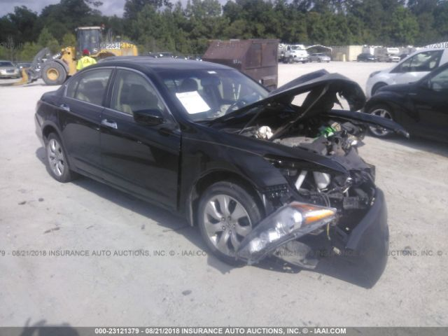 2010 HONDA ACCORD - Small image. Stock# 23121379