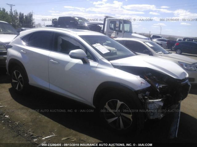 click here to view 2018 LEXUS NX at IBIDSAFELY