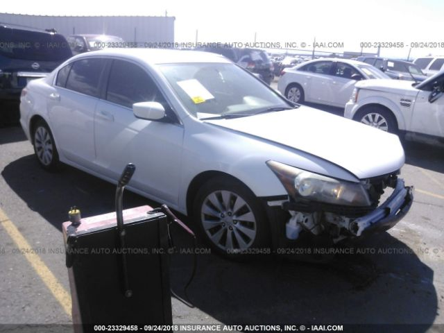 2010 HONDA ACCORD - Small image. Stock# 23329458