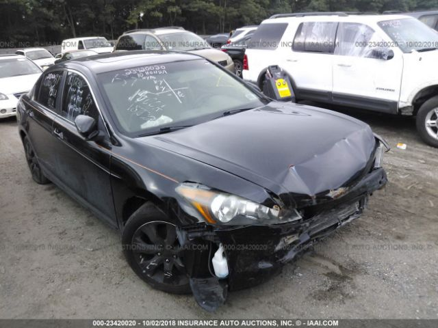 2010 HONDA ACCORD - Small image. Stock# 23420020