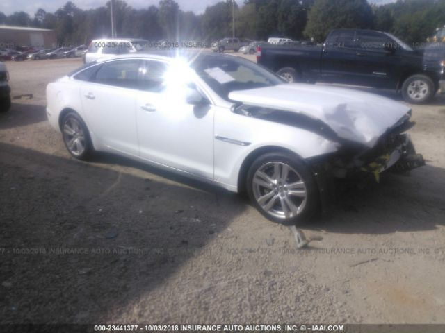 click here to view 2013 JAGUAR XJL at IBIDSAFELY