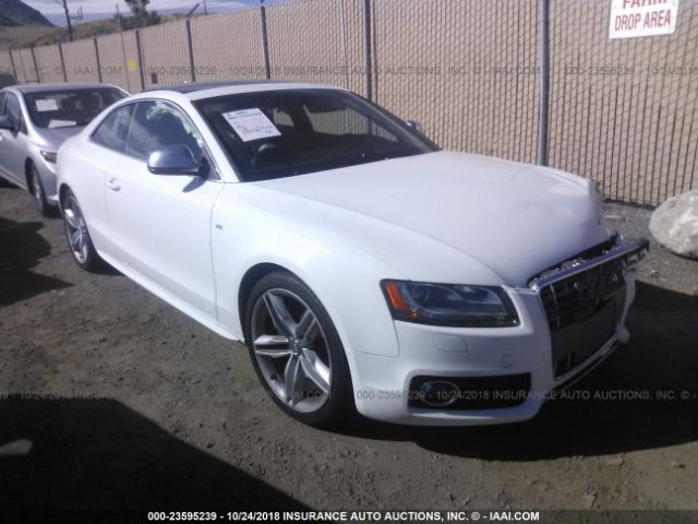 2009 AUDI S5 - Small image. Stock# 23595239