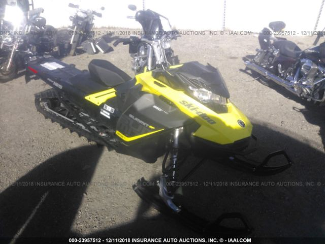 2017 SKIDOO OTHER - Small image. Stock# 23957512