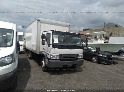 Salvage 2007 FORD LOW CAB FORWARD for sale
