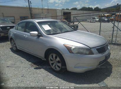Salvage 2010 HONDA ACCORD for sale